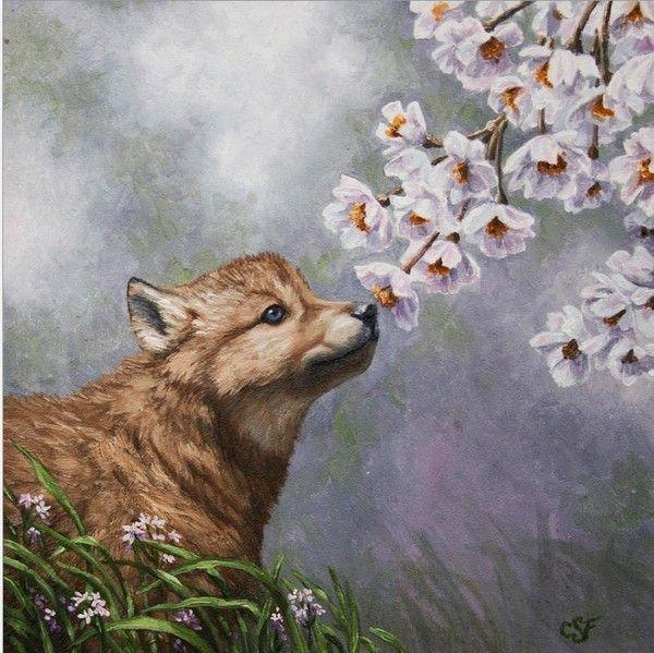 chien humant fleurs printanières