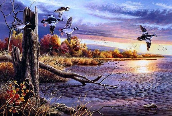 La beauté ailée et animale dans la nature 46522132