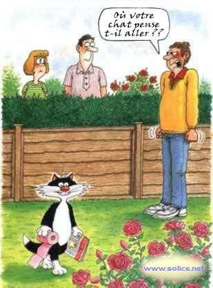 Humour dessiné