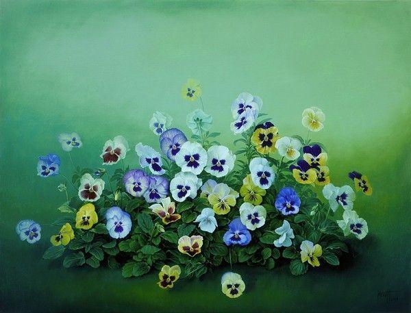 Pensées jolies fleurs