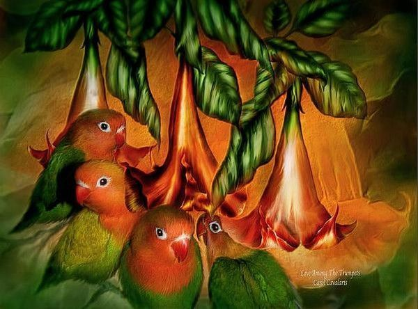Tableaux art digital de Carol Cavalaris
