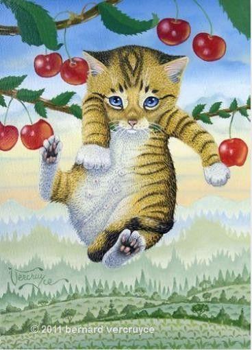 bonjour chaton-cerisier pussycat