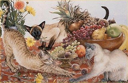 Chats peints serie D ( A.R)