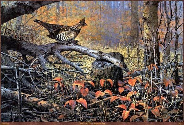 La beauté ailée et animale dans la nature 8c9af793