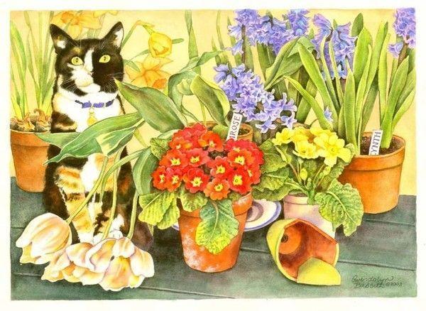 12-Beaux tableaux de Gwendolyn Babbit