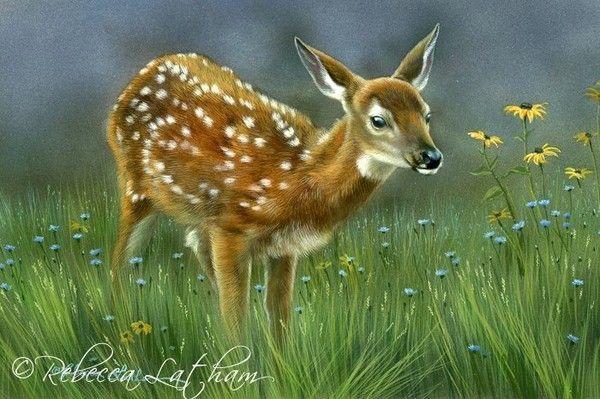 12-Beaux tableaux de Rebecca Latham