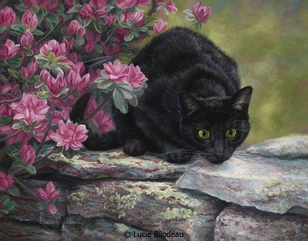 12-Beaux tableaux de Lucie Bilodeau