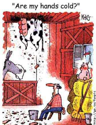 images humours. - Page 2 B9tfjrur