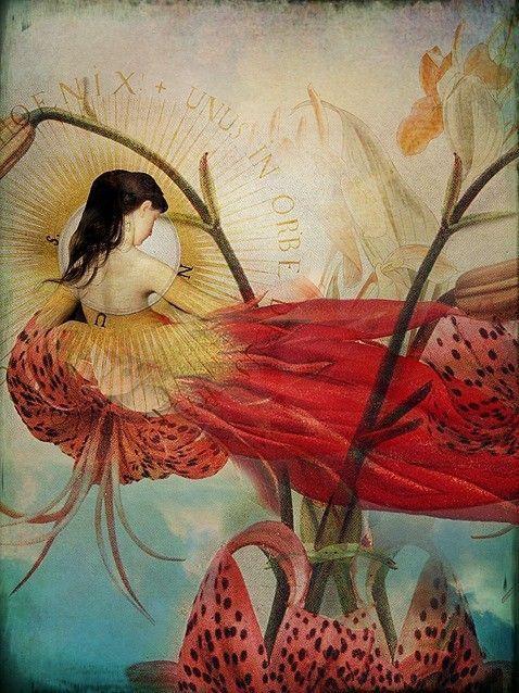 12-Beaux tableaux de Catrin Welz-Stein