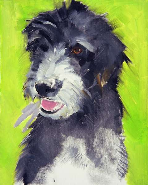 Chiens en peintures