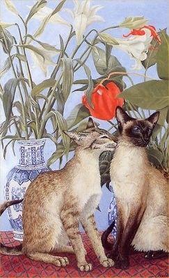 Chats peints serie D ( A .R )