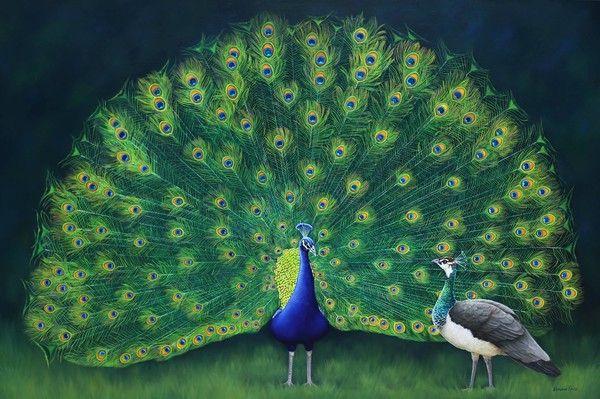 16-oiseaux (& Animaux) peints par K.Castle