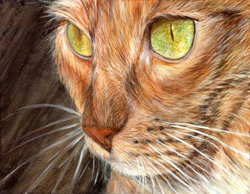 Chats peints : second coffre aux tresors