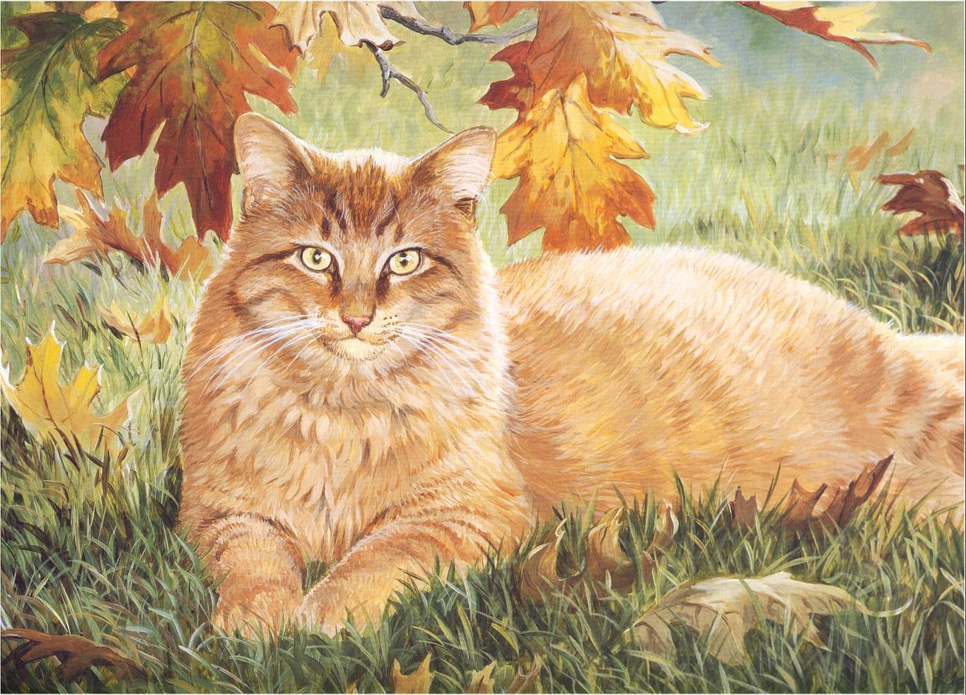 Chats peints coffre aux tresors