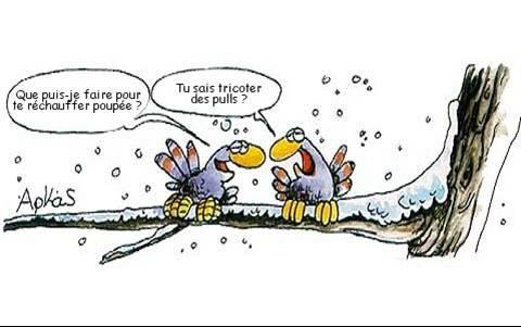 """Résultat de recherche d'images pour """"humour automne"""""""