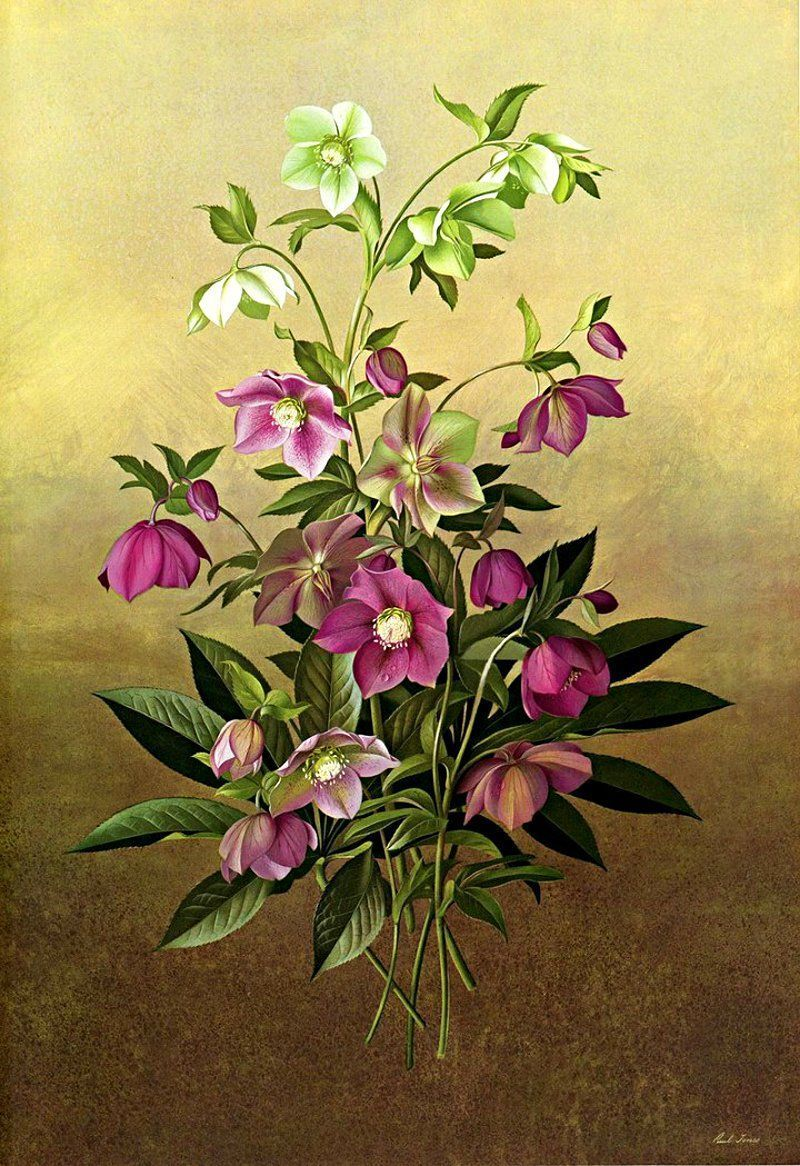 fleurs et jardins en peinture