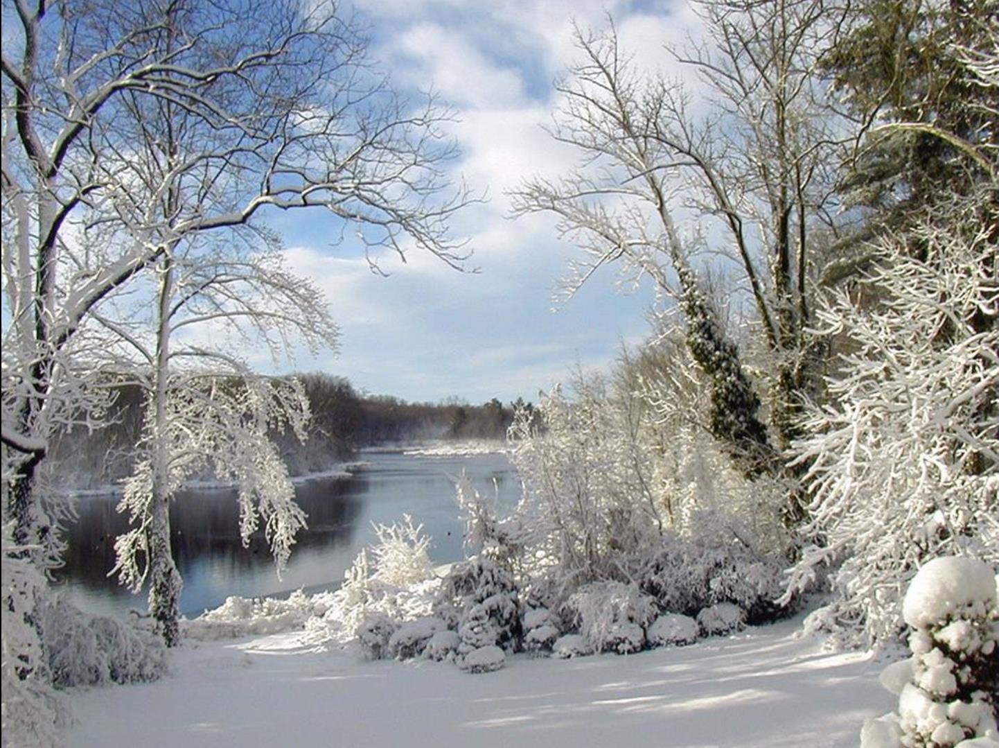 Fonds d ecrans hiver en photos for Fond ecran hiver animaux